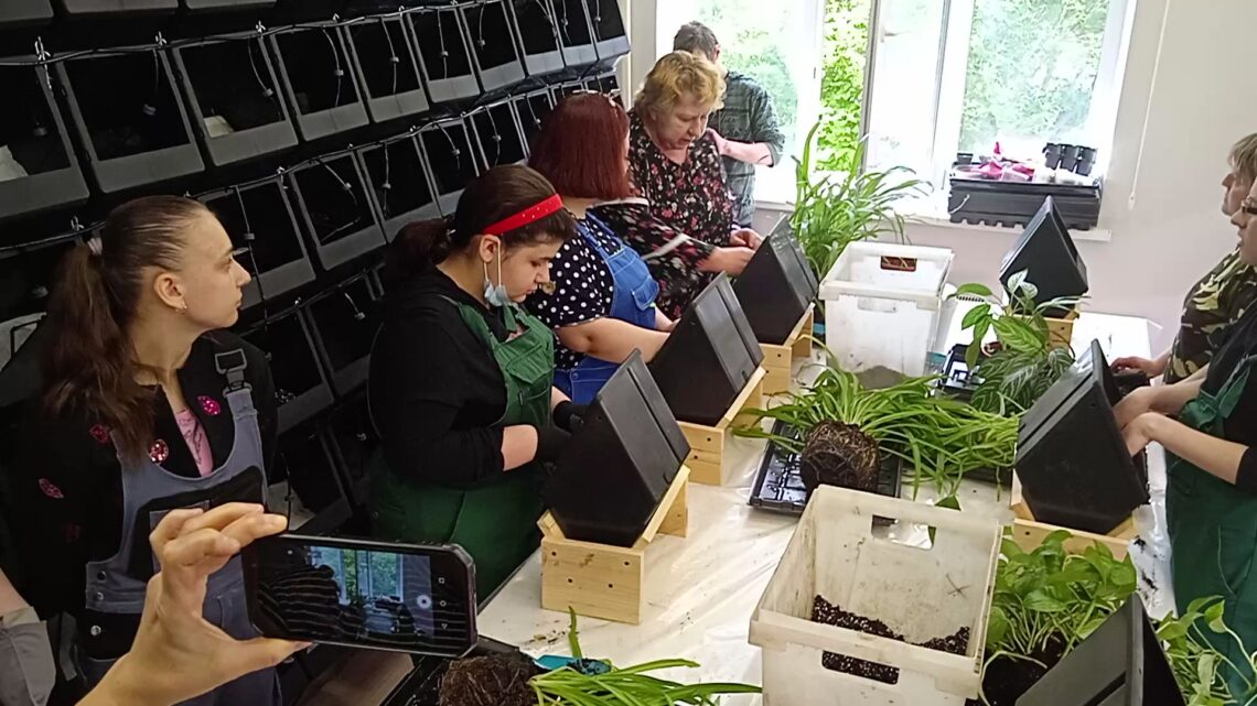 Мастер класс по высадке растений в модули редкого полива в «зеленой  мастерской БФ Круг