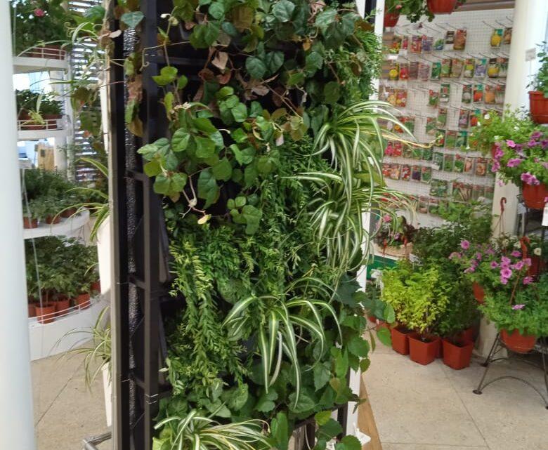 «Городской садовник вертикального озеленения» – курс дополнительного образования